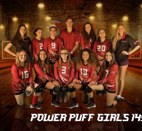 Power Puff 14s